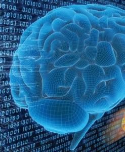 cervello binario