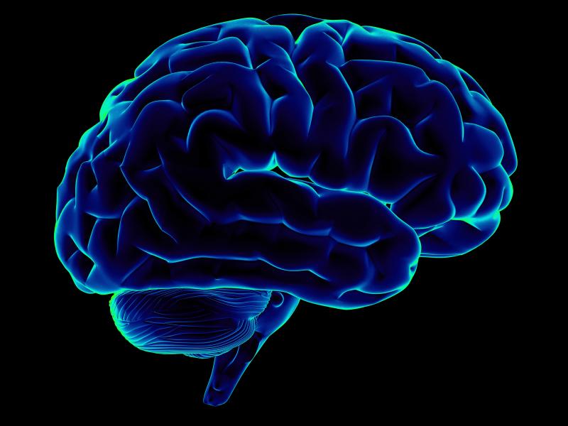alcol-cervello
